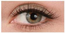 guide_eyeliner1.jpg