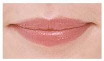 guide_lips6.jpg